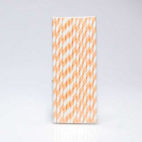 Paper Straw 25 pc - Stripes - Peach