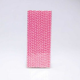 Paper Straw 25 pc - Chevron - Hot Pink