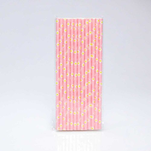 Paper Straw 25 pc - Dasie - Pink